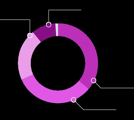 Infografia - Riacho Fundo II