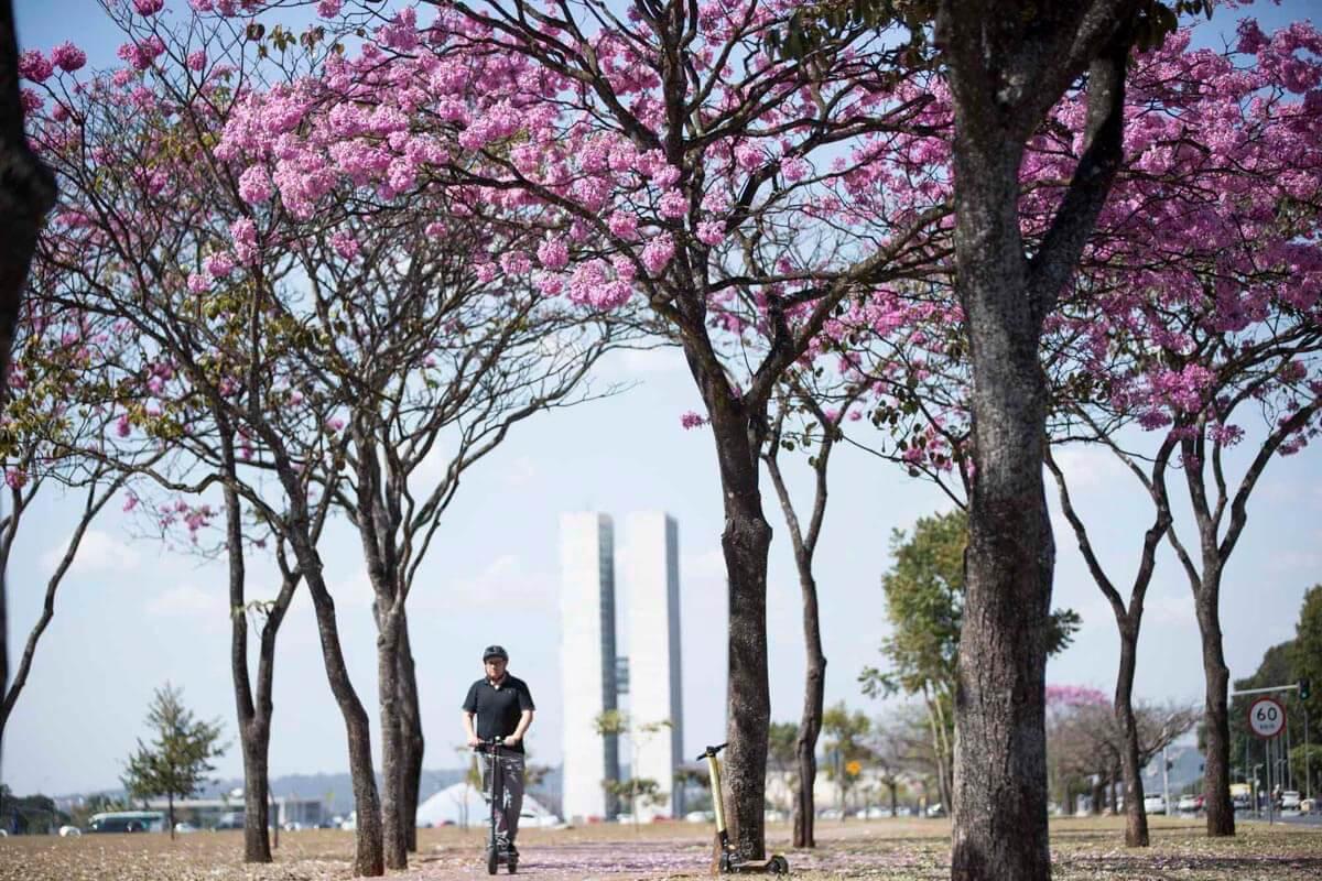 Em Brasília, o projeto de lei distrital para regulamentar a utilização de patinetes só deve ser votado entre setembro e outubro de 2019